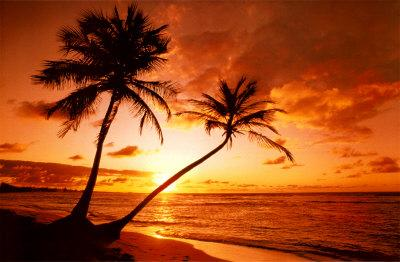 Tropical Beach, Sunset