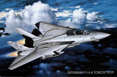 Airplane, Tomcat