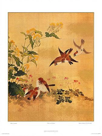 Flowers and Sparrows