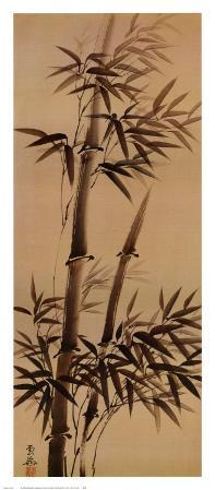 Bamboo Forever I