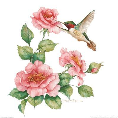 Ruby Throated Humingbird with Roses II