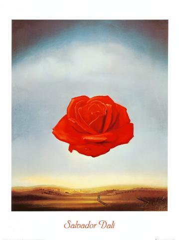 Rose Medidative, c.1958