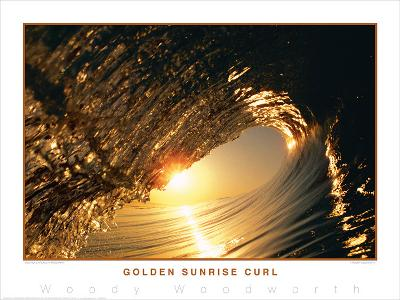 Golden Sunrise Curl