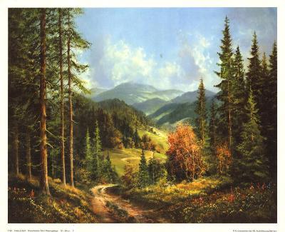 Romantisches Tal I Riesengebirge