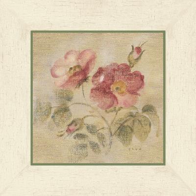 Burgundy Rose on Antique Linen