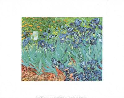 Irises, Saint-Remy, c.1889