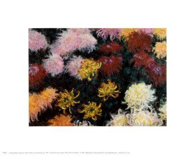 Chrysanthemum, 1897