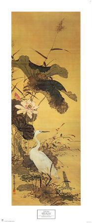 Heron and Lotus
