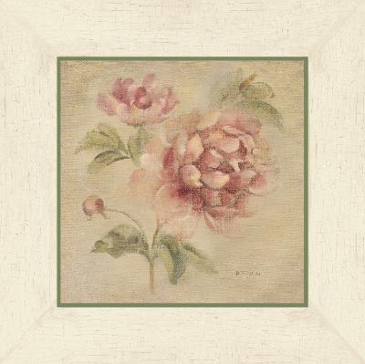 Coral Rose on Antique Linen