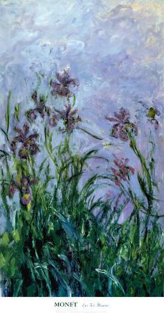 Iris Mauves