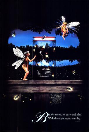 Fairies - Fireflies