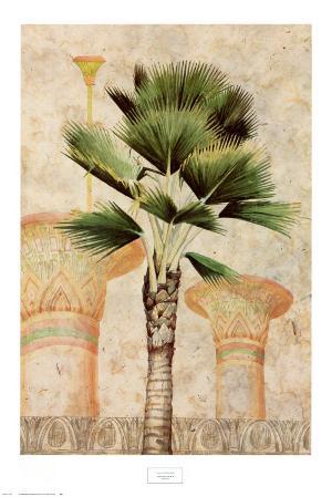 Egyptian Palm II