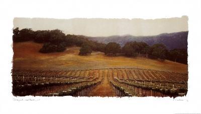 Vineyard and Oak I