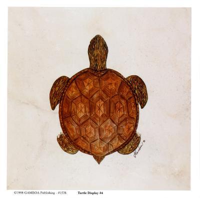 Turtle Display 4