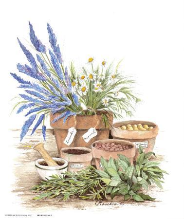 Herb Display 2