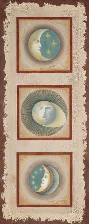 Moon Panel
