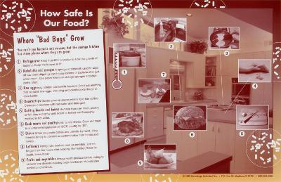 Food Safety (folded)