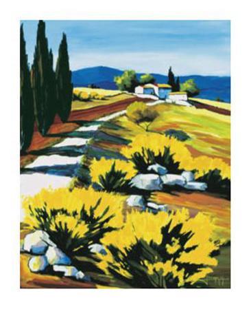 Genets de Provence