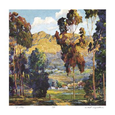 Pauma Valley
