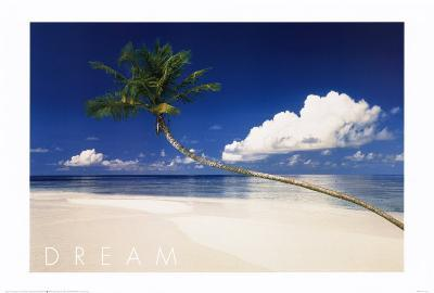 Dream Beach