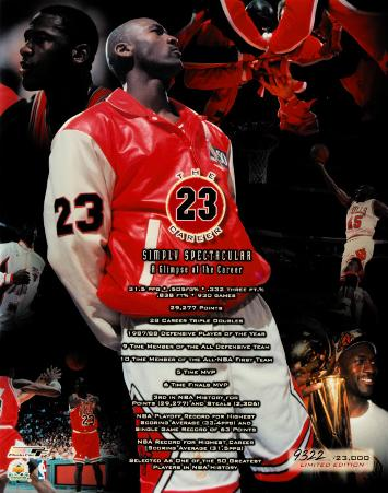 Michael Jordan - The Career (Limited Edition)