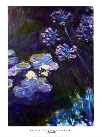 Water Lilies and Agapanthus, 1914-1917