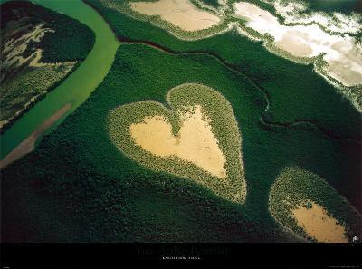Coeur de Voh