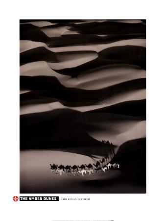 The Amber Dunes