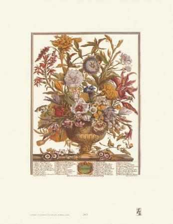 Twelve Months of Flowers, 1730, September