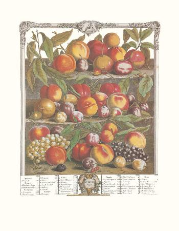 Twelve Months of Fruits, 1732, August