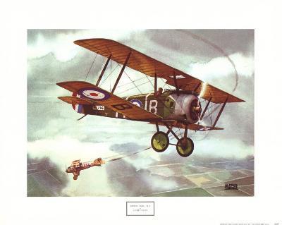 Sopwith Camel, 1917