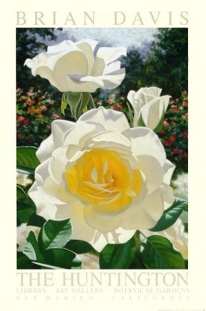 The Huntington Rose Garden