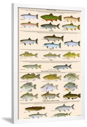 metal fish art wall decor.htm great lakes sportman s game fish  posters allposters com  great lakes sportman s game fish