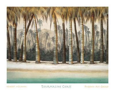 Tourmaline Coast