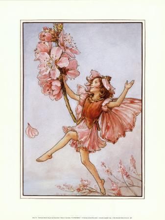 The Almond Blossom Fairy