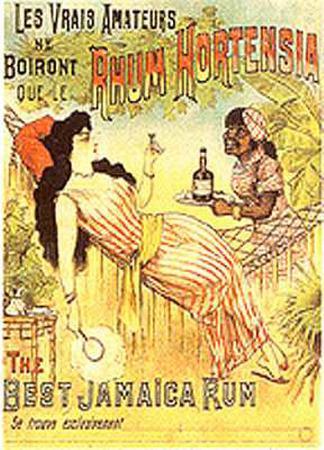 Rhum Hortensia