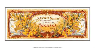 Savon Surfin