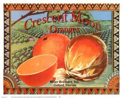 Crescent Moon Oranges