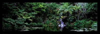 Ayrlies, Auckland, New Zealand