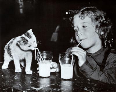 Milk Buddies
