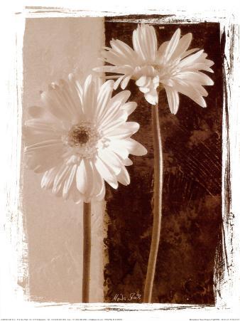 Basic Flowers I