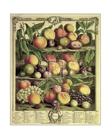 Fruits of the Season Autumn