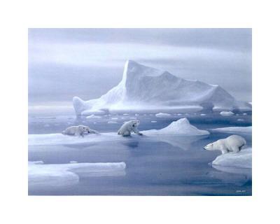 Play Time Polar Bear