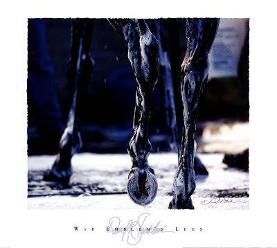 War Emblem's Legs