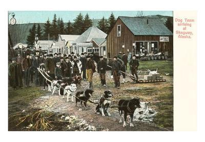 Dog Team, Skagway, Alasla