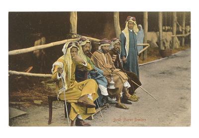 Arab Horse Dealers