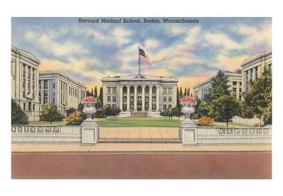Harvard Medical School, Boston, Massachusetts