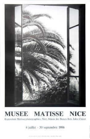 The Palm Tree