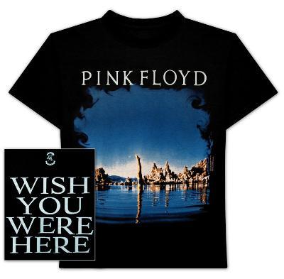 Pink Floyd - Diver