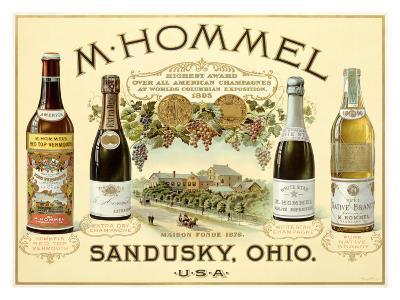 Hommel Champagne Vineyard